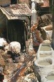 Fez's皮革厂在摩洛哥 库存图片