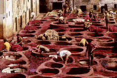 Fez dyeing. Workers tanning and dyeing in red hides in the vats of Fez tanneries, Morocco Stock Photo