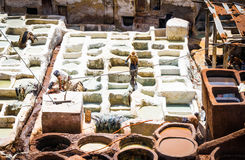 Fez, Marocco, Tannery leather souk. Stock Image