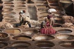"""FEZ MAROCKO †""""FEBRUARI 20, 2017: Män som arbetar på den berömda Chouara garveriet i medinaen av Fez, Marocko Arkivbilder"""