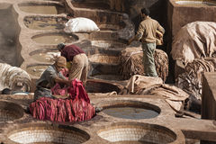 """FEZ MAROCKO †""""FEBRUARI 20, 2017: Män som arbetar på den berömda Chouara garveriet i medinaen av Fez, Marocko Royaltyfri Bild"""