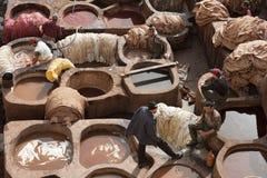 FEZ MAROCKO - FEBRUARI 20, 2017: Män som arbetar inom målarfärghålen på den berömda Chouara garveriet i medinaen av Fez Arkivfoton