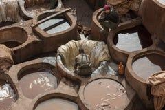 FEZ MAROCKO - FEBRUARI 20, 2017: Män som arbetar inom målarfärghålen på den berömda Chouara garveriet i medinaen av Fez Arkivbilder