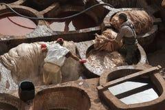 FEZ MAROCKO - FEBRUARI 20, 2017: Män som arbetar inom målarfärghålen på den berömda Chouara garveriet i medinaen av Fez Arkivfoto