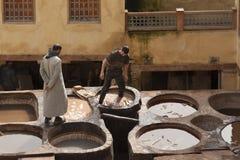 FEZ MAROCKO - FEBRUARI 20, 2017: Män som arbetar inom målarfärghålen på den berömda Chouara garveriet i medinaen av Fez Royaltyfri Fotografi
