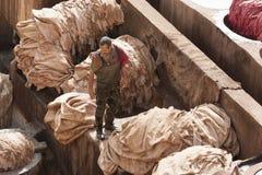 FEZ MAROCKO - FEBRUARI 20, 2017: Man som arbetar inom målarfärghålen på den berömda Chouara garveriet i medinaen av Fez Royaltyfria Foton