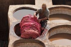 FEZ MAROCKO - FEBRUARI 20, 2017: Man som arbetar inom målarfärghålen på den berömda Chouara garveriet i medinaen av Fez Fotografering för Bildbyråer