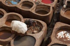 FEZ MAROCKO - FEBRUARI 20, 2017: Man som arbetar inom målarfärghålen på den berömda Chouara garveriet i medinaen av Fez Arkivfoto