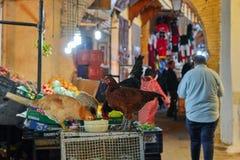 Fez, Marokko - 7. Dezember 2018: Hühner, die mitten in einer Straße im Medina von Fez essen stockfoto