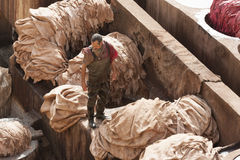 FEZ, MAROKKO - 20. FEBRUAR 2017: Bemannen Sie das Arbeiten innerhalb der Farbenlöcher an der berühmten Chouara-Gerberei im Medina Lizenzfreie Stockfotos