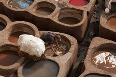 FEZ, MOROCCO - FEBRUARY 20, 2017: Man working within the paint holes at the famous Chouara Tannery in the medina of Fez. Stock Photo
