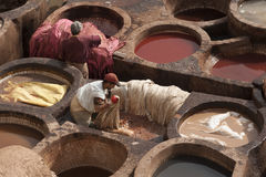 FEZ, MOROCCO - FEBRUARY 20, 2017: Men working within the paint holes at the famous Chouara Tannery in the medina of Fez. Royalty Free Stock Photo