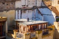 fez morocco tannery Royaltyfri Foto