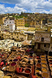 fez morocco tannery Arkivfoto