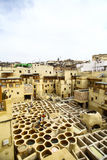 fez morocco tannery Royaltyfria Bilder