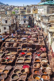 Fez tannery Royalty Free Stock Photo