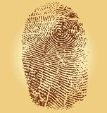 Ffingerprints,  illustration. Isolated on vintage background Royalty Free Stock Image