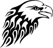 Fflame del águila Foto de archivo libre de regalías
