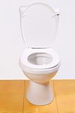Öffnen Sie Toilettenschüssel Lizenzfreies Stockfoto