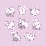 FFunny猪用不同的姿势 拿着礼物的卡通人物 宠物的情感 新年好 2019年 明信片 向量 图库摄影