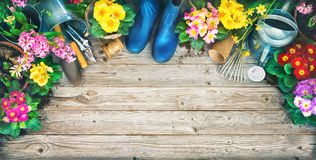 Gardening tools and spring flowers on the terrace Stock Photography