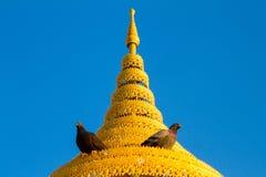 Fågel på ett guld- tiered paraply under bakgrund för blå himmel Royaltyfria Bilder