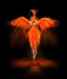 fågel phoenix Fotografering för Bildbyråer