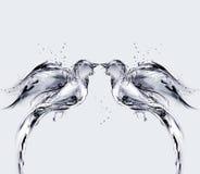 fågelförälskelsevatten Arkivbild
