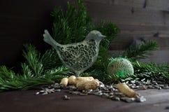 fågellim Royaltyfri Bild