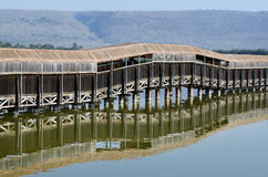 Fåglar som håller ögonen på på laken Hula Royaltyfri Fotografi