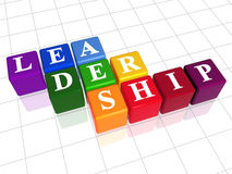 Führung in der Farbe Stockbilder