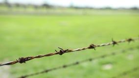 Fiação farpada da oxidação de uma cerca elétrica para impedir o escape video estoque