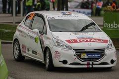 FIA World Rally Championship France 2013 - Super Speciaal Stadium 1 royalty-vrije stock foto's