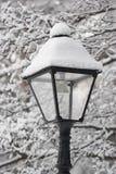 Fiaba 13 di inverno Fotografia Stock Libera da Diritti