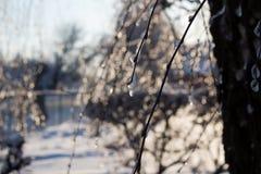 Fiaba di inverno Immagine Stock