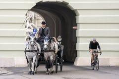 Fiacres在维也纳,奥地利, 免版税库存照片