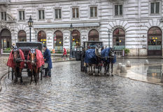 Fiacres horse cabs on the street of Vienna. Fiacres horse cabs on the street in Vienna in the rain Royalty Free Stock Photo