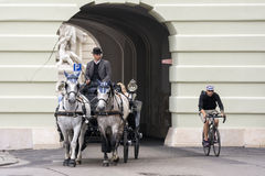 Fiacres in Vienna, Austria ,. VIENNA, AUSTRIA, JULY 3,2016: Vienna is famous for Fiacres (Fiaker),hackney coach, a horse-drawn four-wheeled carriage for hire Royalty Free Stock Photo