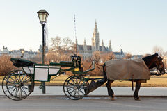 Fiaker carriage in Vienna, Austria Royalty Free Stock Images