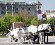 Fiaker, horsedrawn of Vienna Royalty Free Stock Image