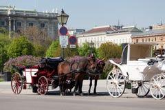 Fiaker, horsedrawn of Vienna Stock Photography