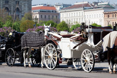 Fiaker, horsedrawn of Vienna Stock Image