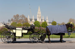 Fiaker, horsedrawn of Vienna Stock Images