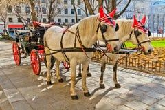 Fiaker Pferdenwagen in Wien, Österreich Stockbild