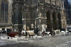 Fiaker in Vienna. Fiaker horses in Vienna Austria Royalty Free Stock Photos