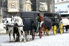 Fiaker in Wenen Stock Afbeelding