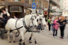 Fiaker in Wenen, Oostenrijk Royalty-vrije Stock Afbeelding