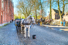 Fiaker with white horse waiting for tourists in Bruges, Belgium Royalty Free Stock Photography