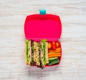 Fiambrera rosada con el bocadillo y las verduras Fotografía de archivo libre de regalías