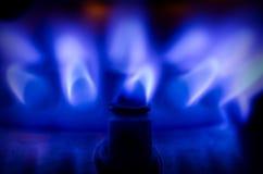 Fiamma blu del gas Immagini Stock